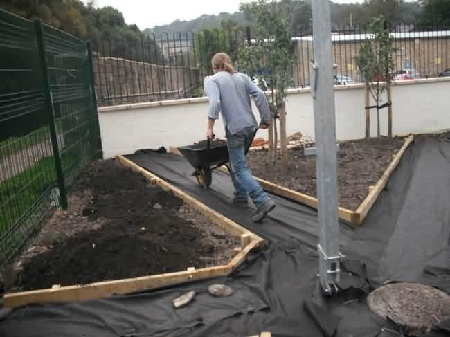 soil shifting  at herb garden