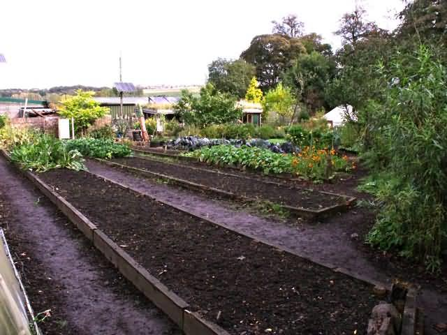 Visit To Offshoots Project Incredible Edible Todmorden