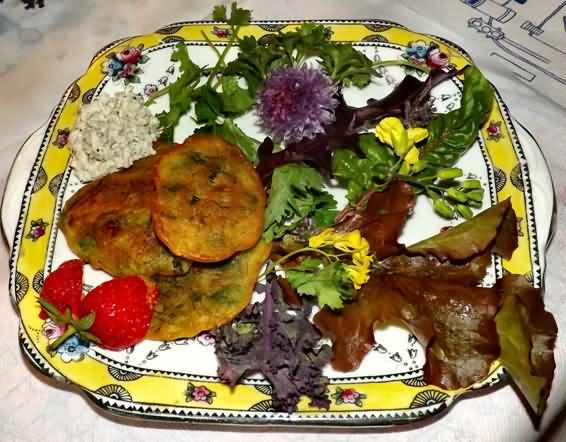 vegan herb fritters made from IET herbs