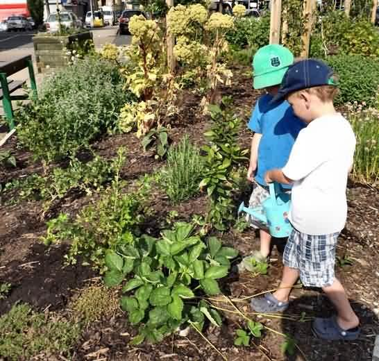 Hugo and Henry get busy watering Pollination Street