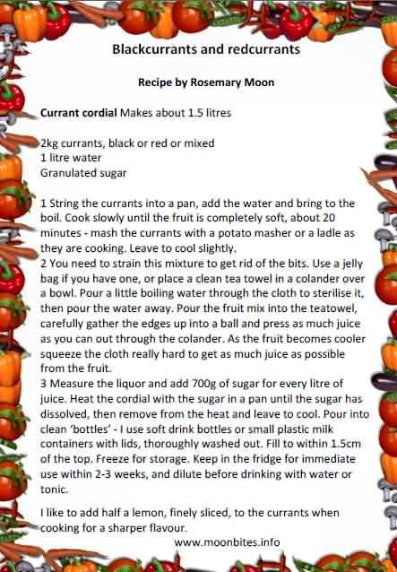 Currant cordial recipe by Rosemary moon
