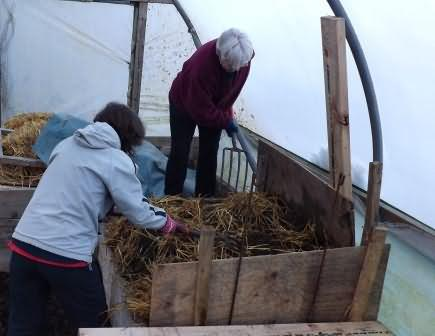 Elaine and Jenny get a layer of straw onto the hot bed