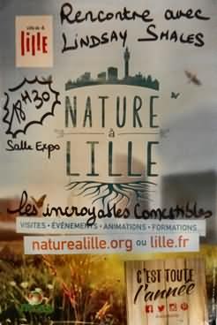 The Poster for Lindsay's talk in Lille