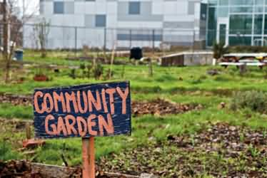 A Community Garden in Boleyn Road, Newham, London