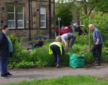 volunteers at Pollination Street